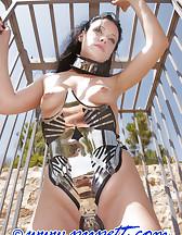 Phantastic steel corset, pic #12