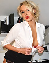 Sexy Secretary In Stockings, pic #1