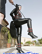 Hard lesson in latex, pic #2
