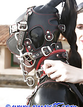 Hard lesson in latex, pic #7