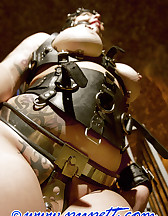 Chained to sulky, pic #5