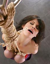 Breast rope bondage, pic #6