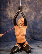 Bound and Gagged, pic #6